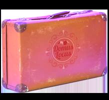 Domus Locus koffer