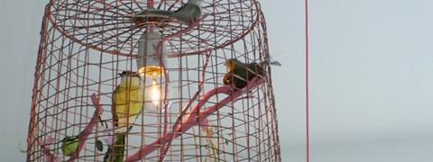 Domus Locus - Workshop - Vogeltjeslamp